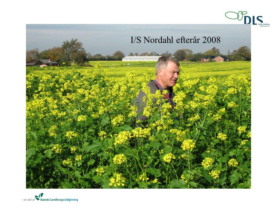 I/S Nordahl efterår 2008