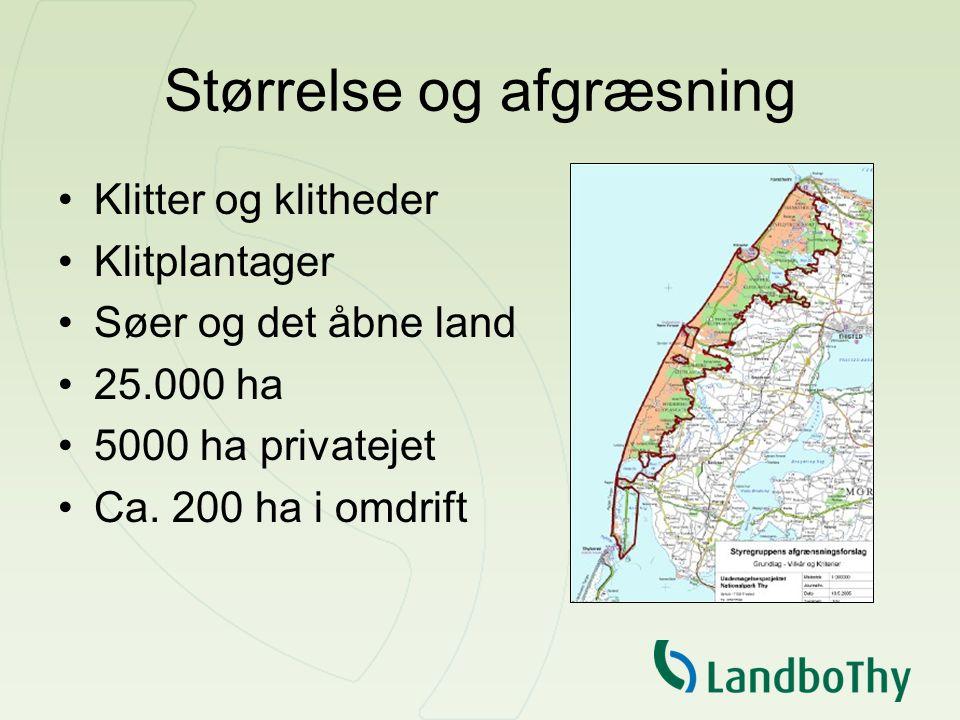 Størrelse og afgræsning Klitter og klitheder Klitplantager Søer og det åbne land 25.000 ha 5000 ha privatejet Ca.