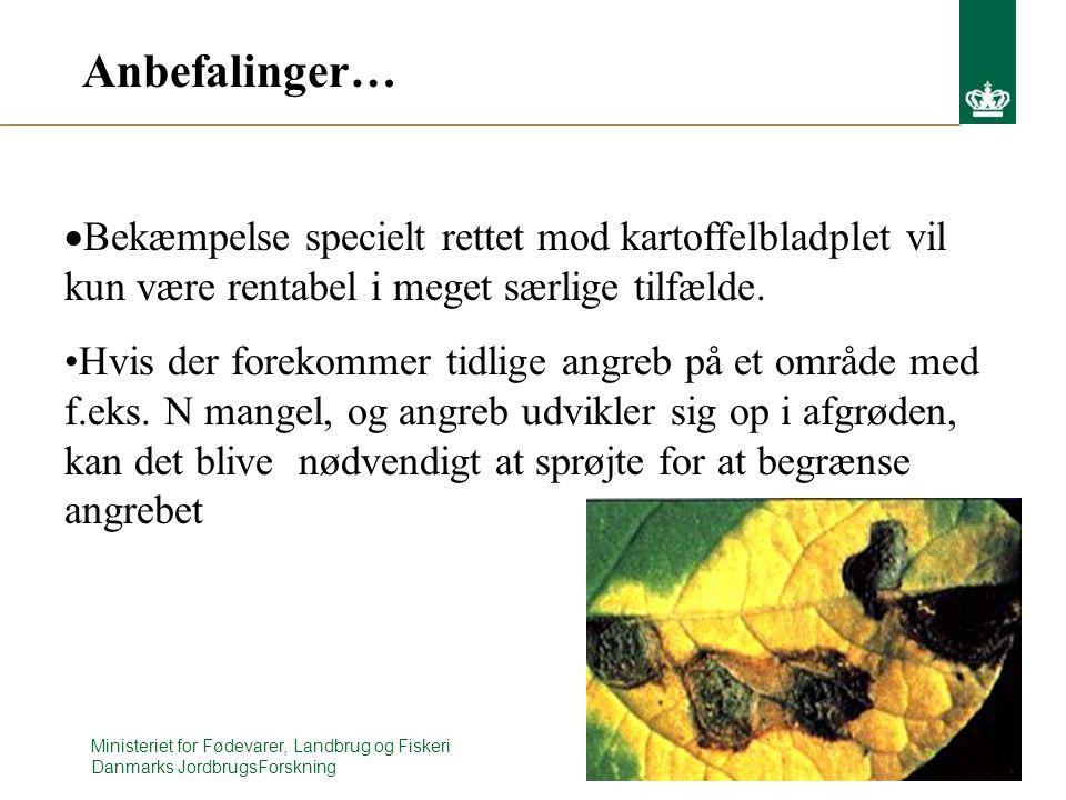 Ministeriet for Fødevarer, Landbrug og Fiskeri Danmarks JordbrugsForskning Anbefalinger…  Bekæmpelse specielt rettet mod kartoffelbladplet vil kun være rentabel i meget særlige tilfælde.