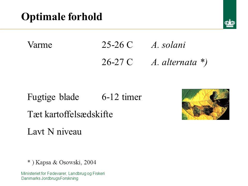 Ministeriet for Fødevarer, Landbrug og Fiskeri Danmarks JordbrugsForskning Optimale forhold Varme 25-26 CA.