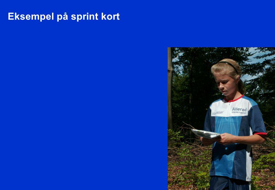 Eksempel på sprint kort