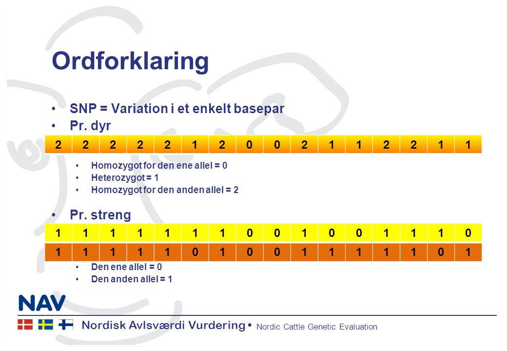 Nordisk Avlsværdi Vurdering Nordic Cattle Genetic Evaluation Ordforklaring SNP = Variation i et enkelt basepar Pr.