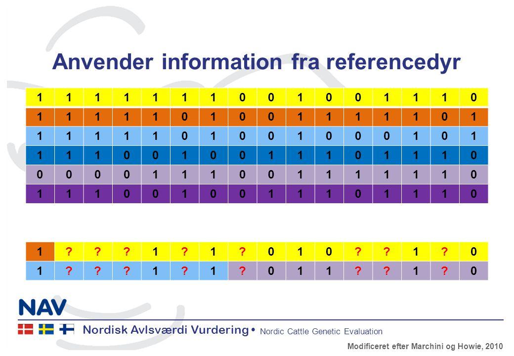 Nordisk Avlsværdi Vurdering Nordic Cattle Genetic Evaluation Anvender information fra referencedyr 1111111001001110 1111101001111101 1111101001000101 1110010011101110 0000111001111110 1110010011101110 1 1 1 010 1 0 1 1 1 011 1 0 Modificeret efter Marchini og Howie, 2010