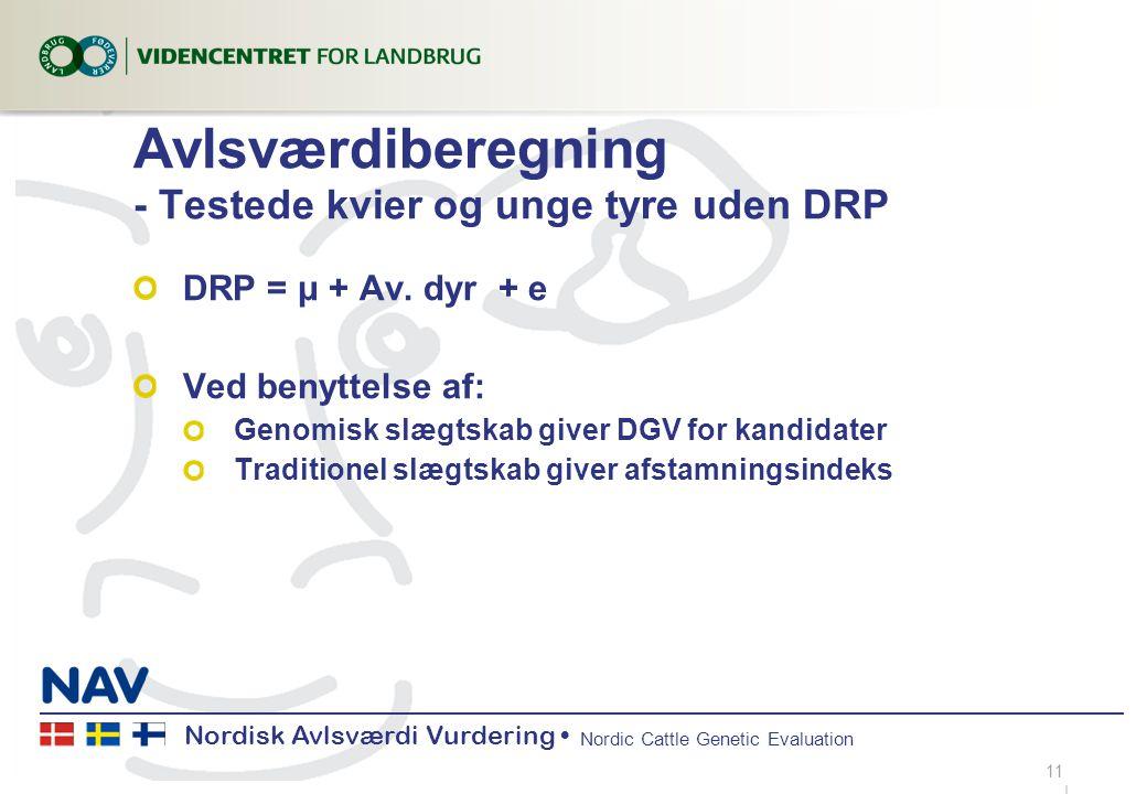 Nordisk Avlsværdi Vurdering Nordic Cattle Genetic Evaluation Avlsværdiberegning - Testede kvier og unge tyre uden DRP DRP = μ + Av.