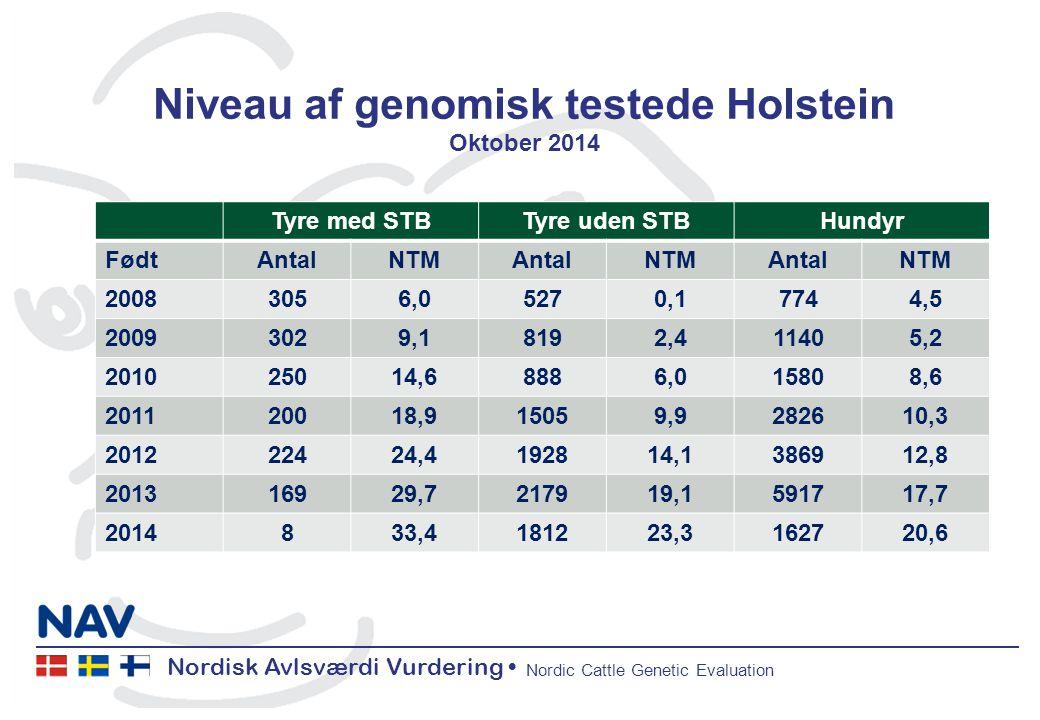 Nordisk Avlsværdi Vurdering Nordic Cattle Genetic Evaluation Niveau af genomisk testede Holstein Oktober 2014 Tyre med STBTyre uden STBHundyr FødtAntalNTMAntalNTMAntalNTM 20083056,05270,17744,5 20093029,18192,411405,2 201025014,68886,015808,6 201120018,915059,9282610,3 201222424,4192814,1386912,8 201316929,7217919,1591717,7 2014833,4181223,3162720,6