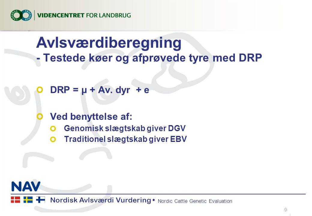 Nordisk Avlsværdi Vurdering Nordic Cattle Genetic Evaluation Avlsværdiberegning - Testede køer og afprøvede tyre med DRP DRP = μ + Av.