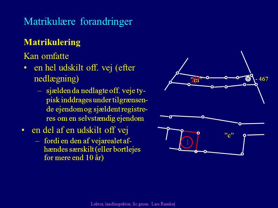 Matrikulære forandringer Matrikulering Kan omfatte Lektor, landinspektør, lic.geom.