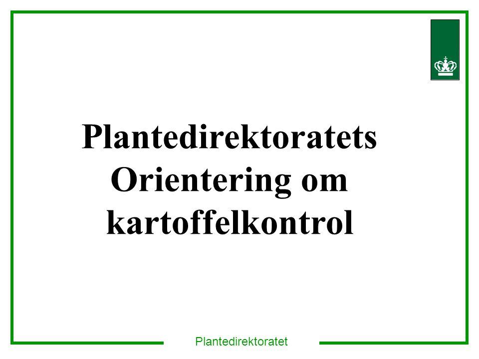 Plantedirektoratet Plantedirektoratets Orientering om kartoffelkontrol