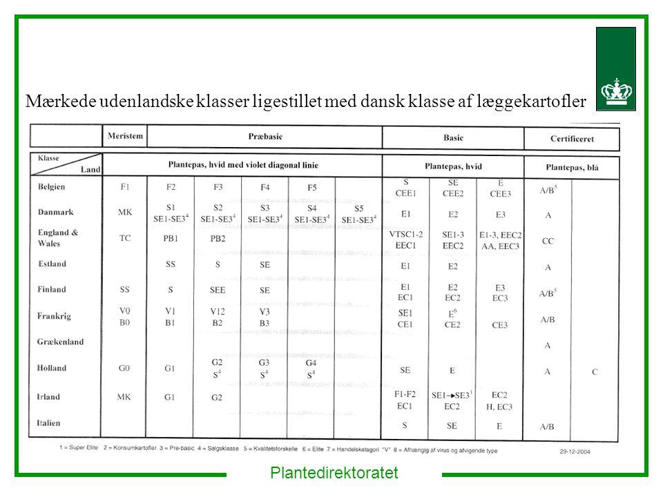 Plantedirektoratet Mærkede udenlandske klasser ligestillet med dansk klasse af læggekartofler