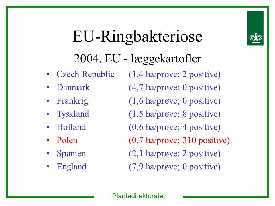 Plantedirektoratet EU-Ringbakteriose 2004, EU - læggekartofler Czech Republic (1,4 ha/prøve; 2 positive) Danmark (4,7 ha/prøve; 0 positive) Frankrig (1,6 ha/prøve; 0 positive) Tyskland (1,5 ha/prøve; 8 positive) Holland (0,6 ha/prøve; 4 positive) Polen (0,7 ha/prøve; 310 positive) Spanien (2,1 ha/prøve; 2 positive) England (7,9 ha/prøve; 0 positive)