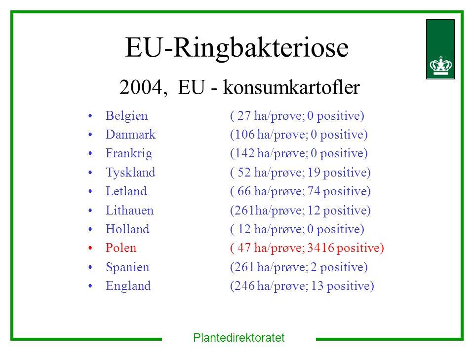 Plantedirektoratet EU-Ringbakteriose 2004, EU - konsumkartofler Belgien ( 27 ha/prøve; 0 positive) Danmark (106 ha/prøve; 0 positive) Frankrig (142 ha/prøve; 0 positive) Tyskland ( 52 ha/prøve; 19 positive) Letland ( 66 ha/prøve; 74 positive) Lithauen(261ha/prøve; 12 positive) Holland ( 12 ha/prøve; 0 positive) Polen ( 47 ha/prøve; 3416 positive) Spanien (261 ha/prøve; 2 positive) England (246 ha/prøve; 13 positive)
