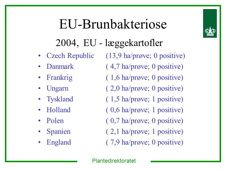 Plantedirektoratet EU-Brunbakteriose 2004, EU - læggekartofler Czech Republic (13,9 ha/prøve; 0 positive) Danmark ( 4,7 ha/prøve; 0 positive) Frankrig ( 1,6 ha/prøve; 0 positive) Ungarn( 2,0 ha/prøve; 0 positive) Tyskland ( 1,5 ha/prøve; 1 positive) Holland ( 0,6 ha/prøve; 1 positive) Polen ( 0,7 ha/prøve; 0 positive) Spanien ( 2,1 ha/prøve; 1 positive) England ( 7,9 ha/prøve; 0 positive)