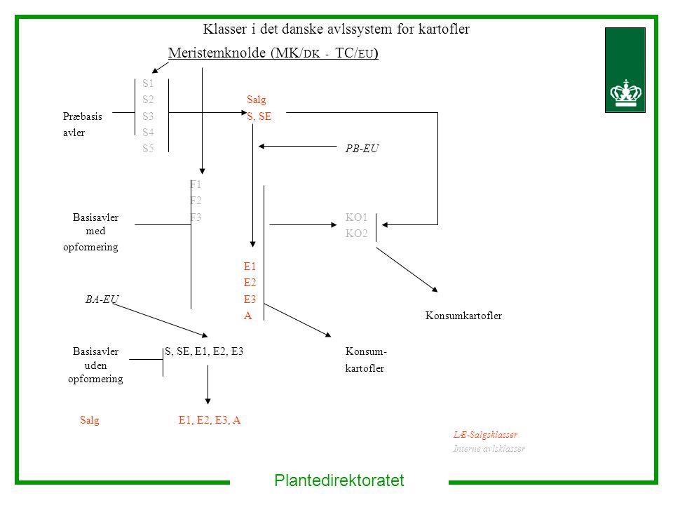 Plantedirektoratet Klasser i det danske avlssystem for kartofler Meristemknolde (MK/ DK - TC/ EU ) Præbasis avler S1 S2 S3 S4 S5 Salg S, SE PB-EU Basisavler med opformering F1 F2 F3KO1 KO2 BA-EU E1 E2 E3 AKonsumkartofler Basisavler uden opformering S, SE, E1, E2, E3Konsum- kartofler Salg E1, E2, E3, A LÆ-Salgsklasser Interne avlsklasser