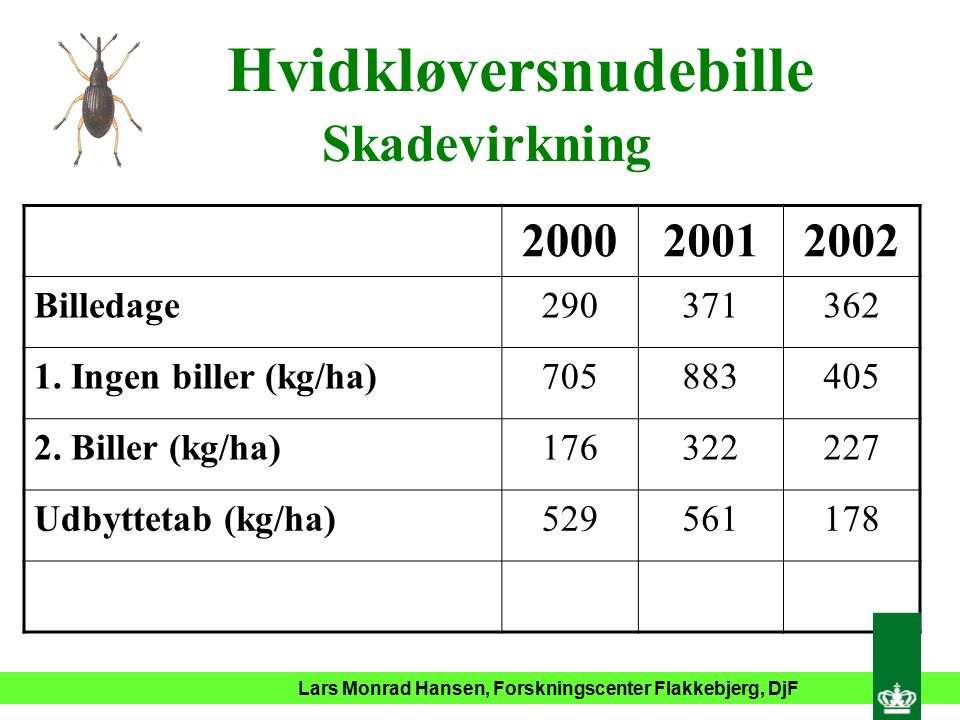 Lars Monrad Hansen, Forskningscenter Flakkebjerg, DjF Hvidkløversnudebille Skadevirkning 200020012002 Billedage290371362 1.