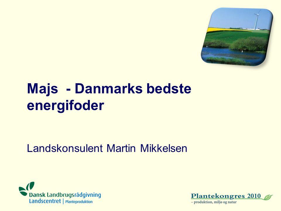 Majs - Danmarks bedste energifoder Landskonsulent Martin Mikkelsen
