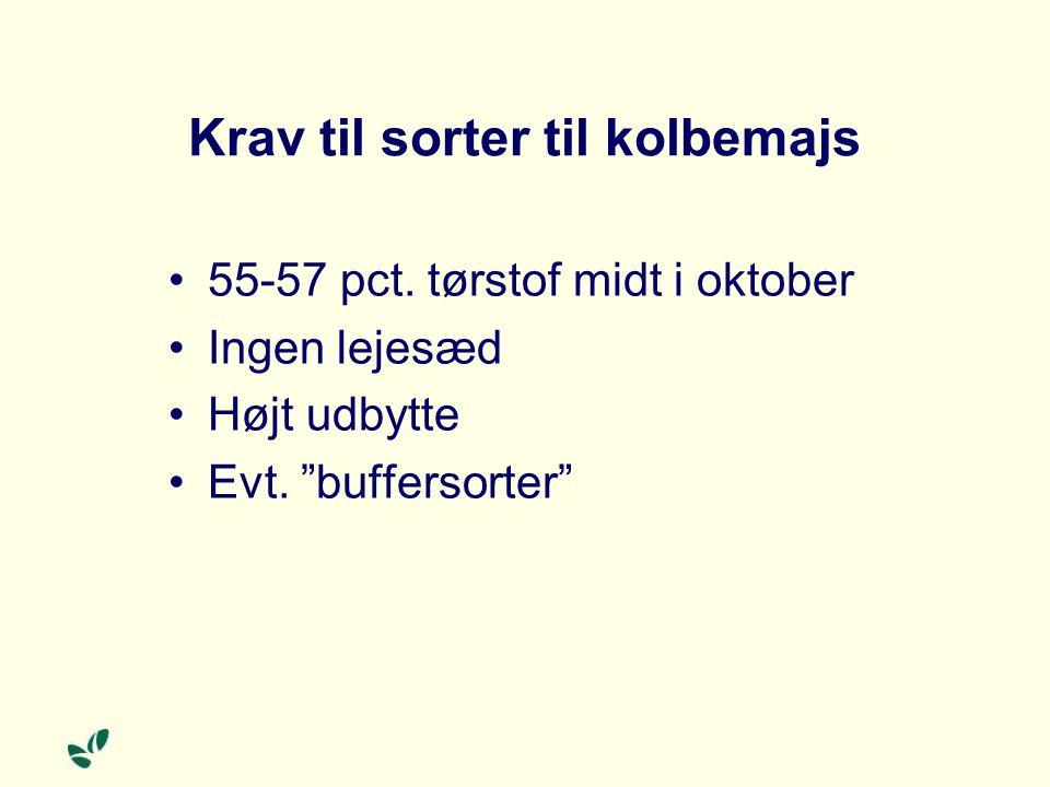 Krav til sorter til kolbemajs 55-57 pct. tørstof midt i oktober Ingen lejesæd Højt udbytte Evt.
