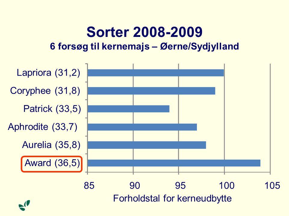 Sorter 2008-2009 6 forsøg til kernemajs – Øerne/Sydjylland 859095100105 Award (36,5) Aurelia (35,8) Aphrodite (33,7) Patrick (33,5) Coryphee (31,8) Lapriora (31,2) Forholdstal for kerneudbytte
