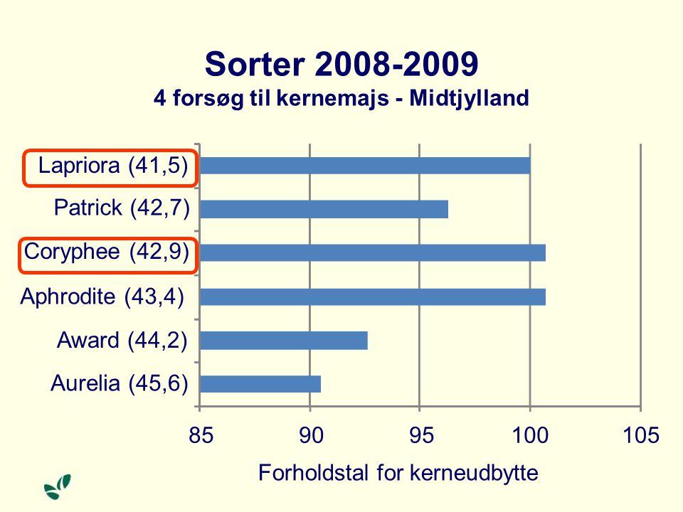 Sorter 2008-2009 4 forsøg til kernemajs - Midtjylland 859095100105 Aurelia (45,6) Award (44,2) Aphrodite (43,4) Coryphee (42,9) Patrick (42,7) Lapriora (41,5) Forholdstal for kerneudbytte