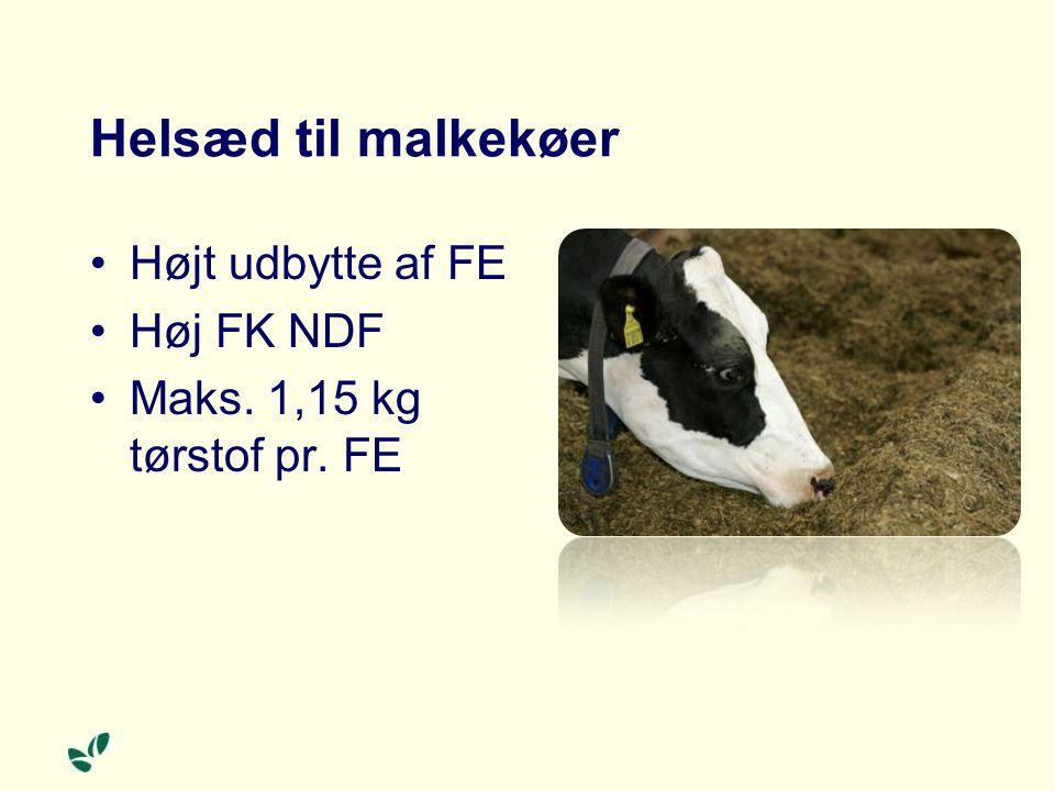 Helsæd til malkekøer Højt udbytte af FE Høj FK NDF Maks. 1,15 kg tørstof pr. FE