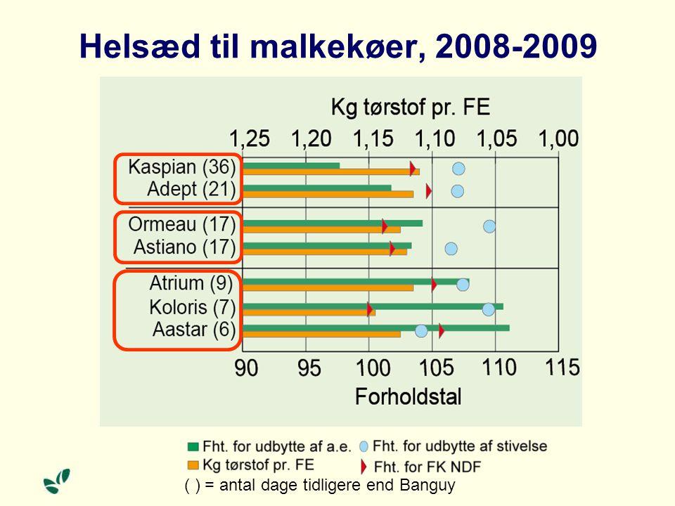 Helsæd til malkekøer, 2008-2009 ( ) = antal dage tidligere end Banguy