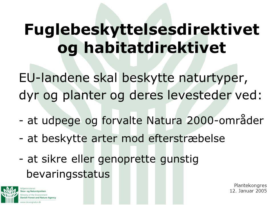 Fuglebeskyttelsesdirektivet og habitatdirektivet EU-landene skal beskytte naturtyper, dyr og planter og deres levesteder ved: - at udpege og forvalte Natura 2000-områder - at beskytte arter mod efterstræbelse - at sikre eller genoprette gunstig bevaringsstatus Plantekongres 12.