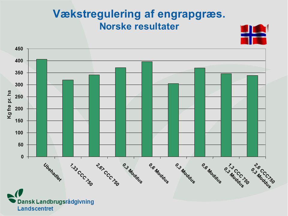 Dansk Landbrugsrådgivning Landscentret Vækstregulering af engrapgræs.