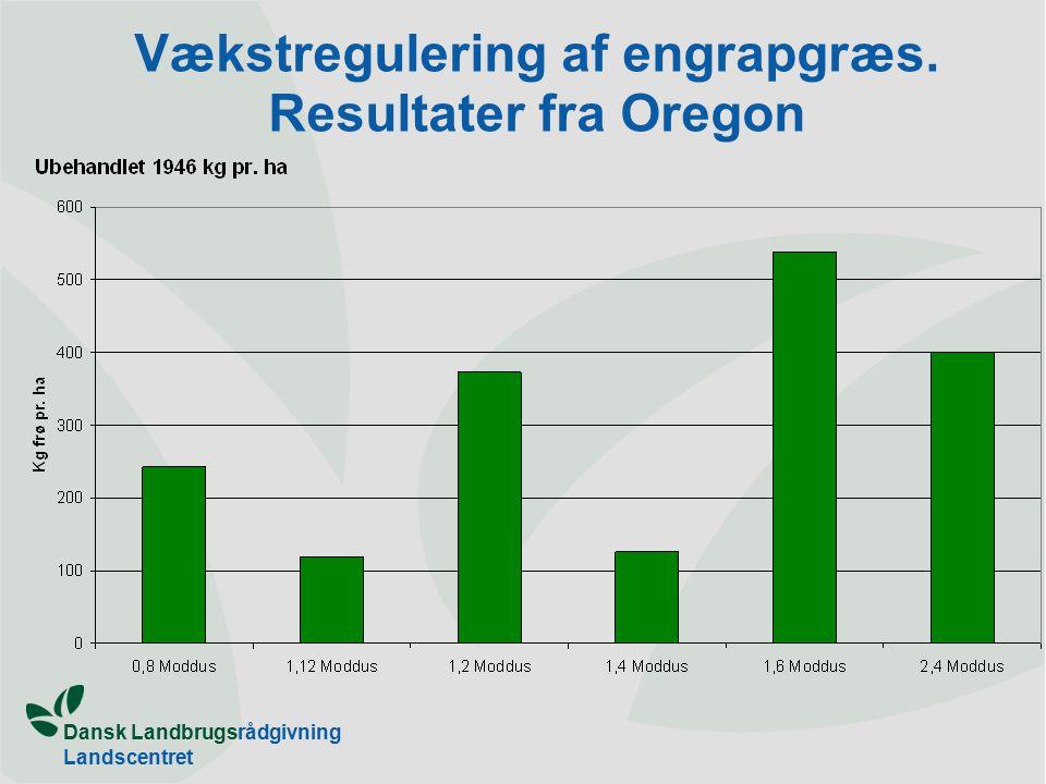 Dansk Landbrugsrådgivning Landscentret Vækstregulering af engrapgræs. Resultater fra Oregon