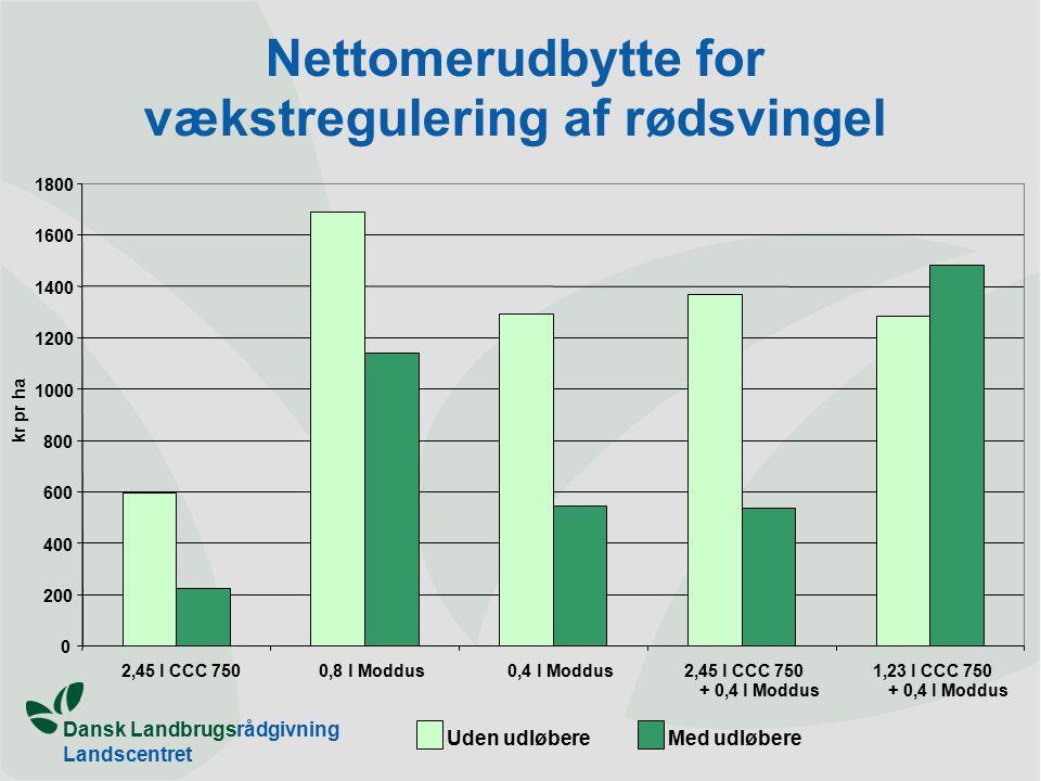 Dansk Landbrugsrådgivning Landscentret Nettomerudbytte for vækstregulering af rødsvingel 0 200 400 600 800 1000 1200 1400 1600 1800 2,45 l CCC 7500,8 l Moddus0,4 l Moddus2,45 l CCC 750 + 0,4 l Moddus 1,23 l CCC 750 + 0,4 l Moddus kr pr ha Uden udløbereMed udløbere