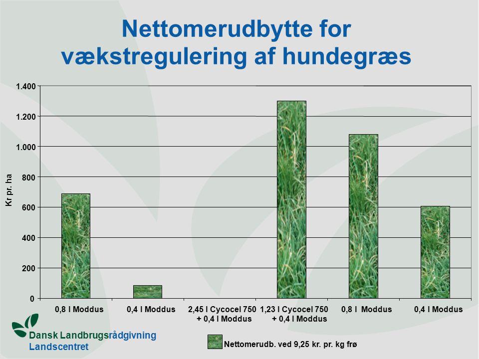 Dansk Landbrugsrådgivning Landscentret Nettomerudbytte for vækstregulering af hundegræs 0 200 400 600 800 1.000 1.200 1.400 0,8 l Moddus0,4 l Moddus2,45 l Cycocel 750 + 0,4 l Moddus 1,23 l Cycocel 750 + 0,4 l Moddus 0,8 l Moddus0,4 l Moddus Kr pr.