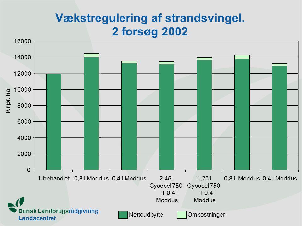 Dansk Landbrugsrådgivning Landscentret Vækstregulering af strandsvingel.