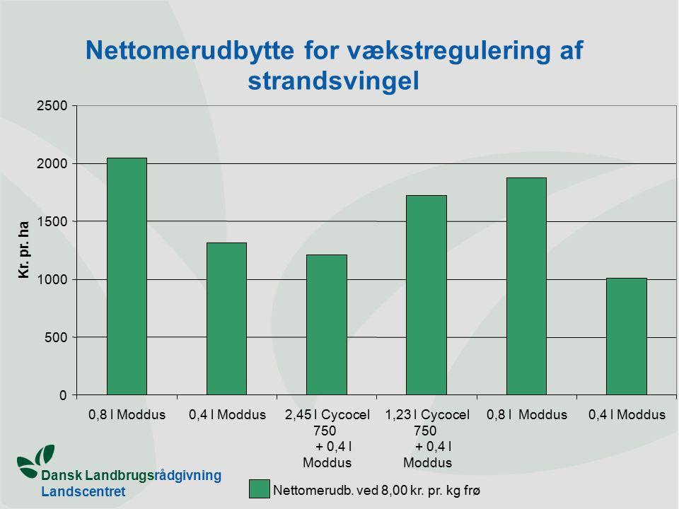 Dansk Landbrugsrådgivning Landscentret Nettomerudbytte for vækstregulering af strandsvingel 0 500 1000 1500 2000 2500 0,8 l Moddus0,4 l Moddus2,45 l Cycocel 750 + 0,4 l Moddus 1,23 l Cycocel 750 + 0,4 l Moddus 0,8 l Moddus0,4 l Moddus Kr.