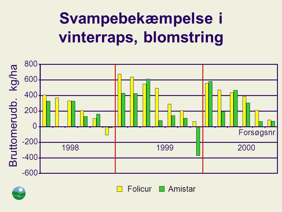 Svampebekæmpelse i vinterraps, blomstring -600 -400 -200 0 200 400 600 800 Bruttomerudb.