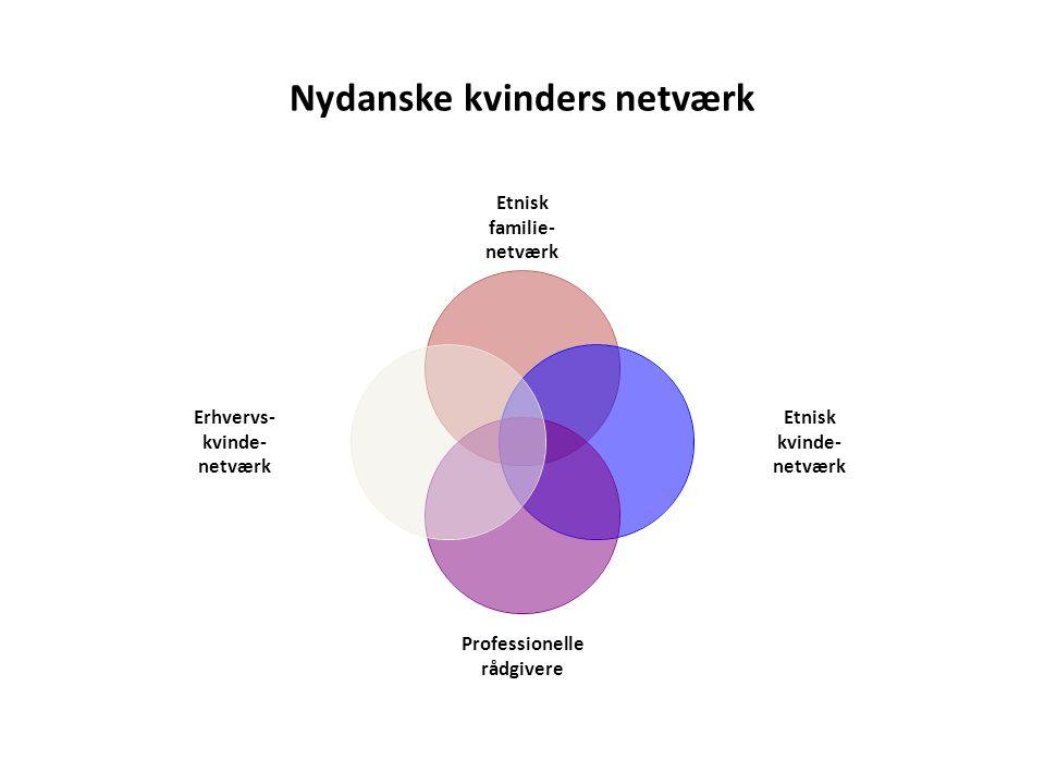 Nydanske kvinders netværk Etnisk familie- netværk Etnisk kvinde- netværk Professionelle rådgivere Erhvervs- kvinde- netværk
