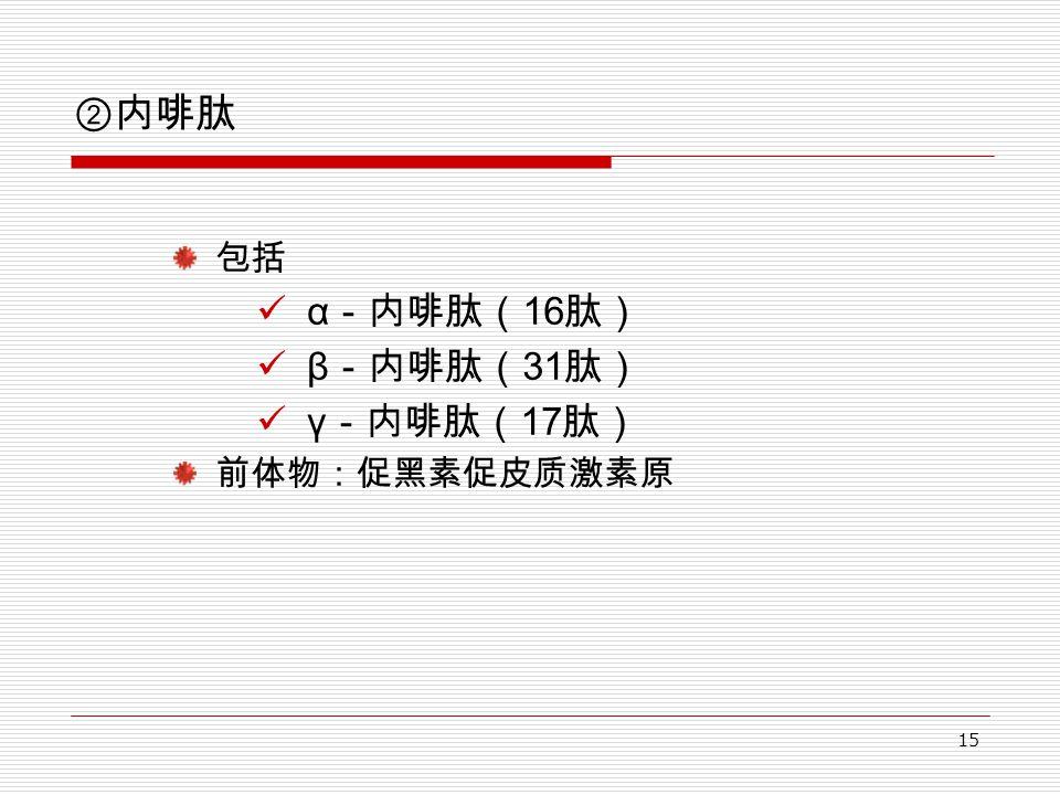 15 ②内啡肽 包括 α -内啡肽( 16 肽) β -内啡肽( 31 肽) γ -内啡肽( 17 肽) 前体物:促黑素促皮质激素原