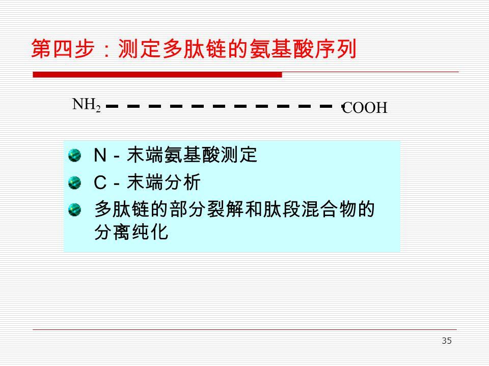 35 第四步:测定多肽链的氨基酸序列 N -末端氨基酸测定 C -末端分析 多肽链的部分裂解和肽段混合物的 分离纯化 NH 2 COOH