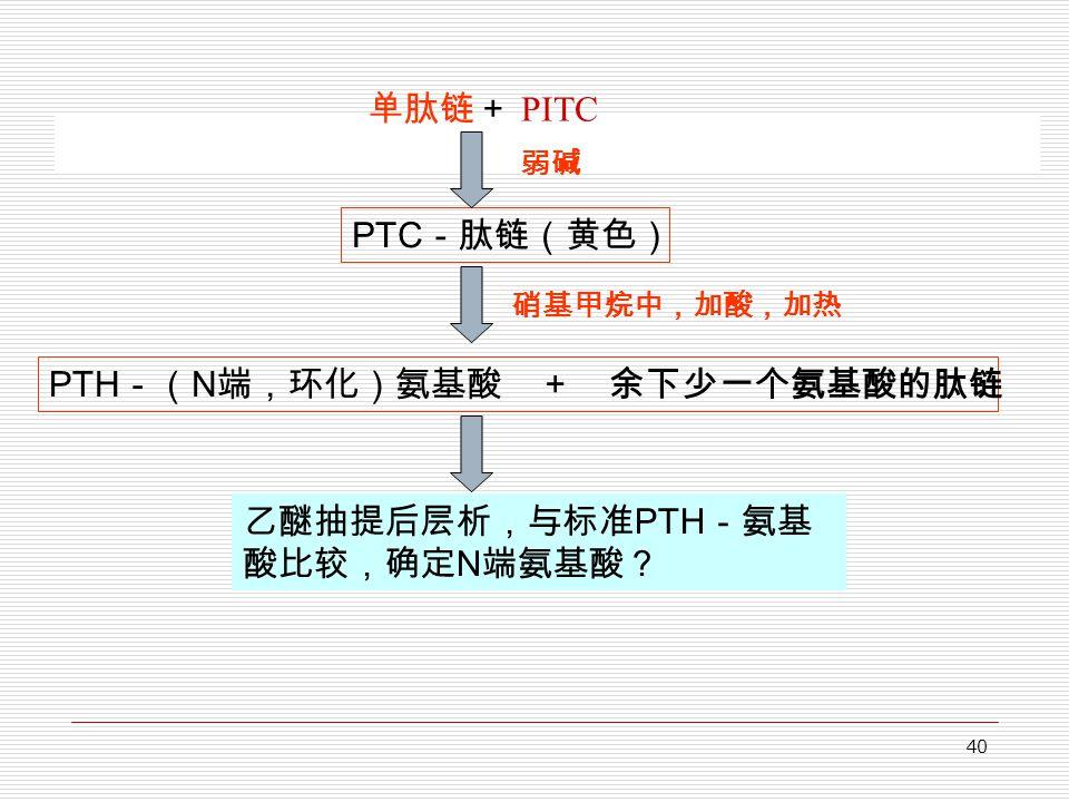 40 单肽链+ PITC PTC -肽链(黄色) PTH -( N 端,环化)氨基酸 + 余下少一个氨基酸的肽链 弱碱 乙醚抽提后层析,与标准 PTH -氨基 酸比较,确定 N 端氨基酸? 硝基甲烷中,加酸,加热