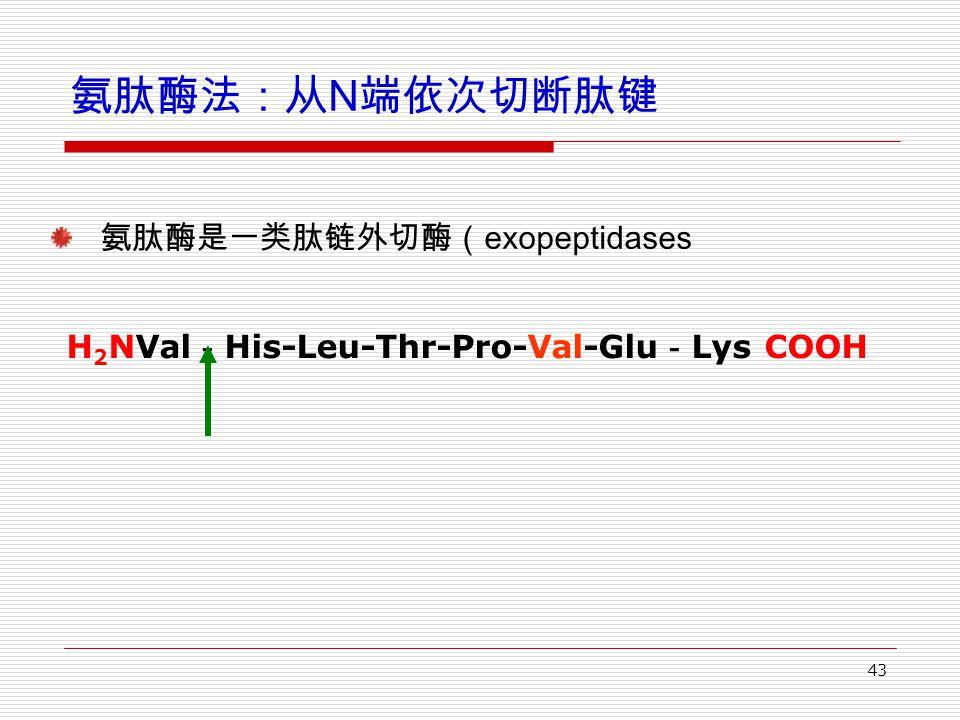 43 氨肽酶法:从 N 端依次切断肽键 氨肽酶是一类肽链外切酶( exopeptidases H 2 NVal - His-Leu-Thr-Pro-Val-Glu - Lys COOH