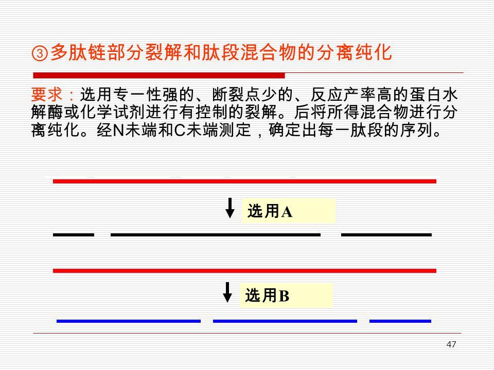 47 ③多肽链部分裂解和肽段混合物的分离纯化 要求:选用专一性强的、断裂点少的、反应产率高的蛋白水 解酶或化学试剂进行有控制的裂解。后将所得混合物进行分 离纯化。经 N 未端和 C 未端测定,确定出每一肽段的序列。 选用 A 选用 B