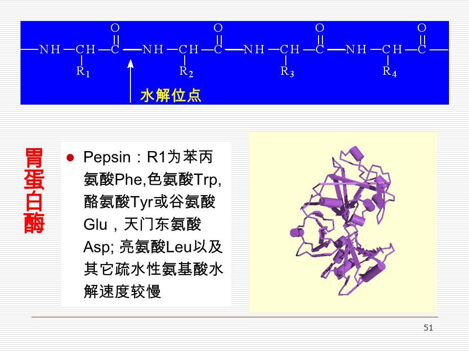 51 Pepsin : R1 为苯丙 氨酸 Phe, 色氨酸 Trp, 酪氨酸 Tyr 或谷氨酸 Glu ,天门东氨酸 Asp; 亮氨酸 Leu 以及 其它疏水性氨基酸水 解速度较慢 水解位点