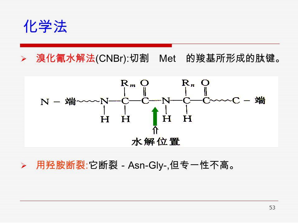 53 化学法  溴化氰水解法 (CNBr): 切割 Met 的羧基所形成的肽键。  用羟胺断裂 : 它断裂- Asn-Gly-, 但专一性不高。