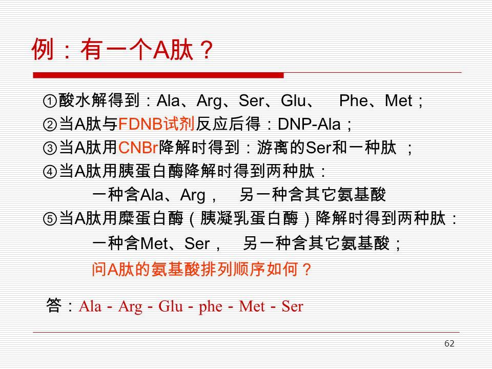 62 例:有一个 A 肽? ①酸水解得到: Ala 、 Arg 、 Ser 、 Glu 、 Phe 、 Met ; ②当 A 肽与 FDNB 试剂反应后得: DNP-Ala ; ③当 A 肽用 CNBr 降解时得到:游离的 Ser 和一种肽 ; ④当 A 肽用胰蛋白酶降解时得到两种肽: 一种含 Ala 、 Arg , 另一种含其它氨基酸 ⑤当 A 肽用糜蛋白酶(胰凝乳蛋白酶)降解时得到两种肽: 一种含 Met 、 Ser , 另一种含其它氨基酸; 问 A 肽的氨基酸排列顺序如何? 答: Ala - Arg - Glu - phe - Met - Ser