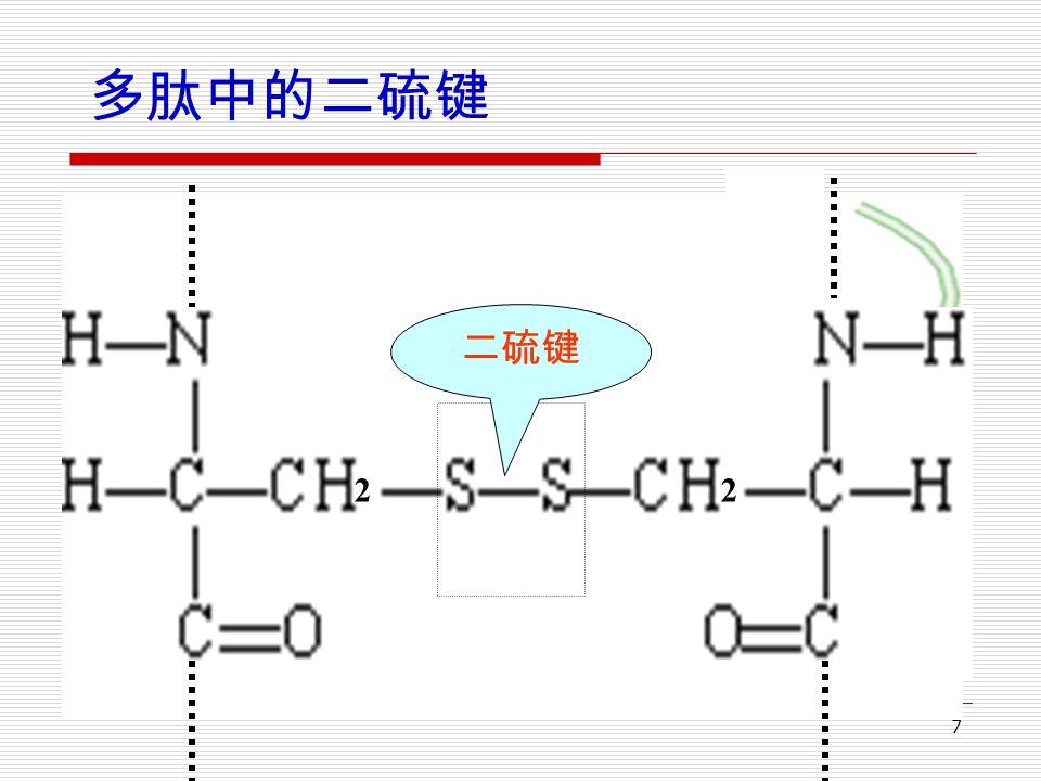 7 多肽中的二硫键 22 二硫键