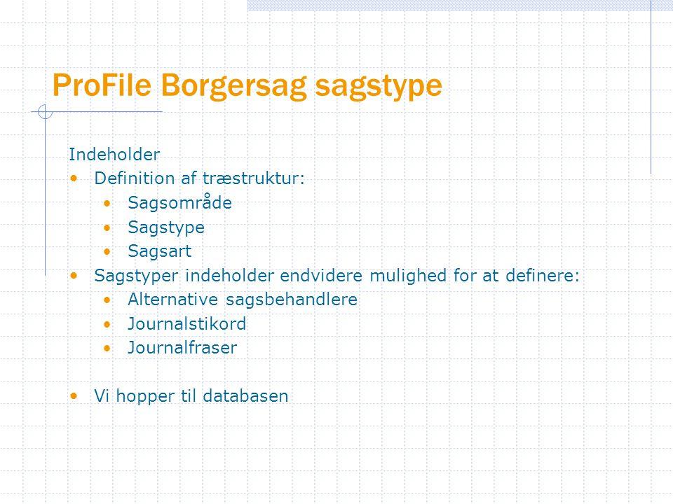 ProFile Borgersag sagstype Indeholder Definition af træstruktur: Sagsområde Sagstype Sagsart Sagstyper indeholder endvidere mulighed for at definere: Alternative sagsbehandlere Journalstikord Journalfraser Vi hopper til databasen