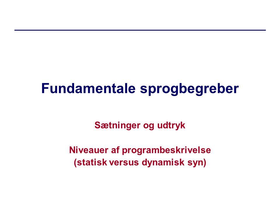 Fundamentale sprogbegreber Sætninger og udtryk Niveauer af programbeskrivelse (statisk versus dynamisk syn)