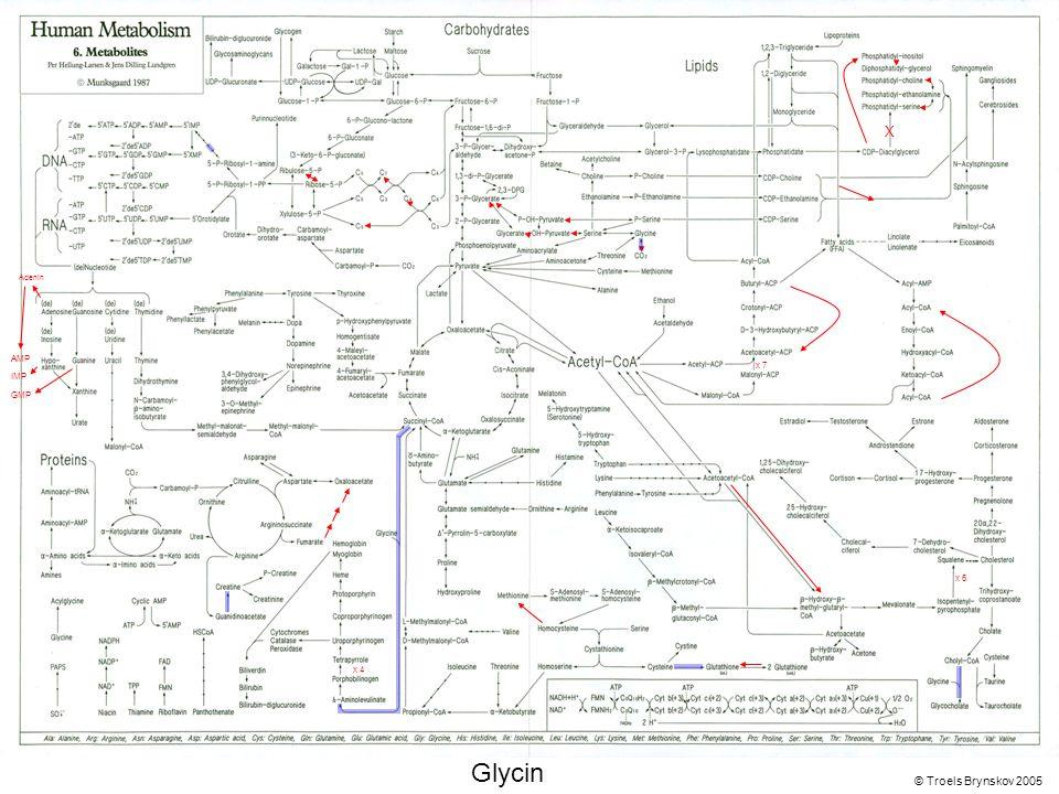 X Adenin © Troels Brynskov 2005 x 7 x 6 x 4 AMP IMP GMP Glycin