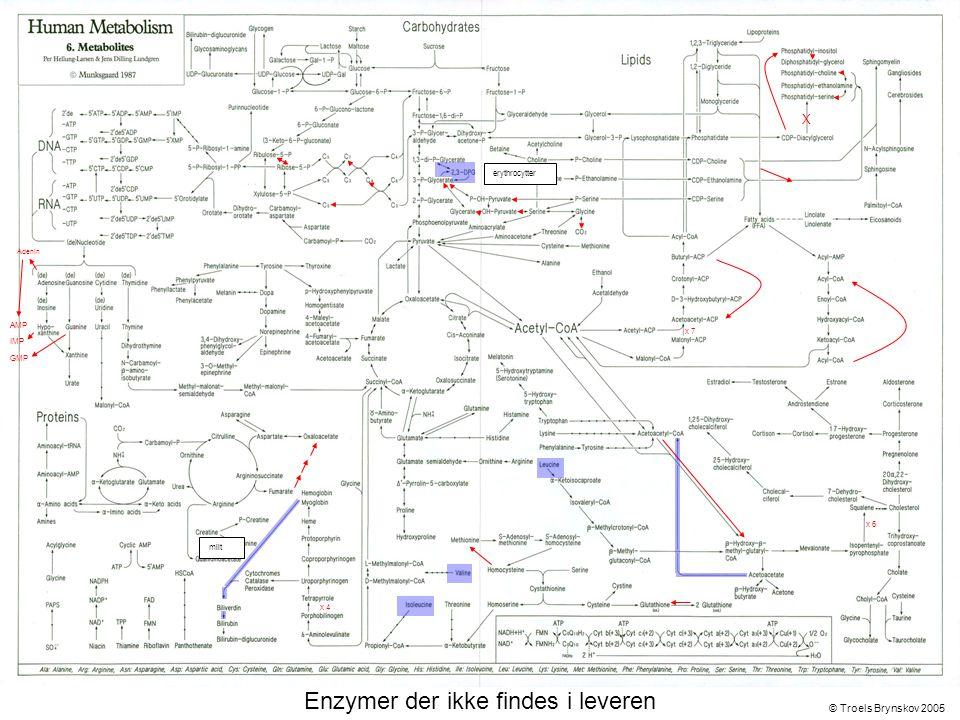 X Adenin © Troels Brynskov 2005 x 7 x 6 x 4 AMP IMP GMP Enzymer der ikke findes i leveren erythrocytter milt