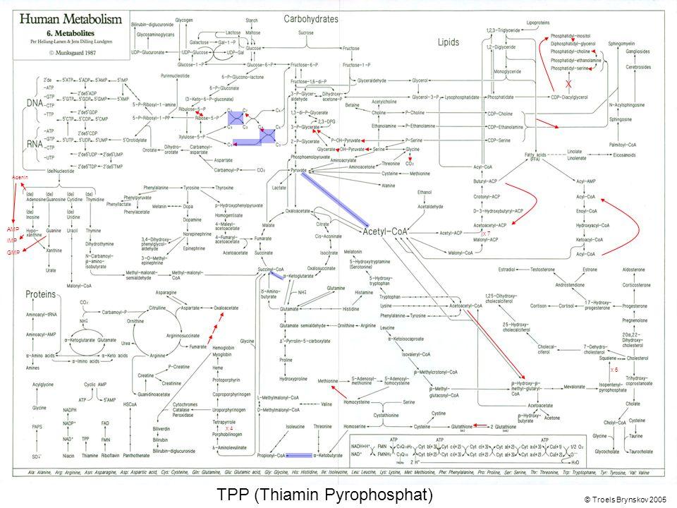 X Adenin © Troels Brynskov 2005 x 7 x 6 x 4 AMP IMP GMP TPP (Thiamin Pyrophosphat)