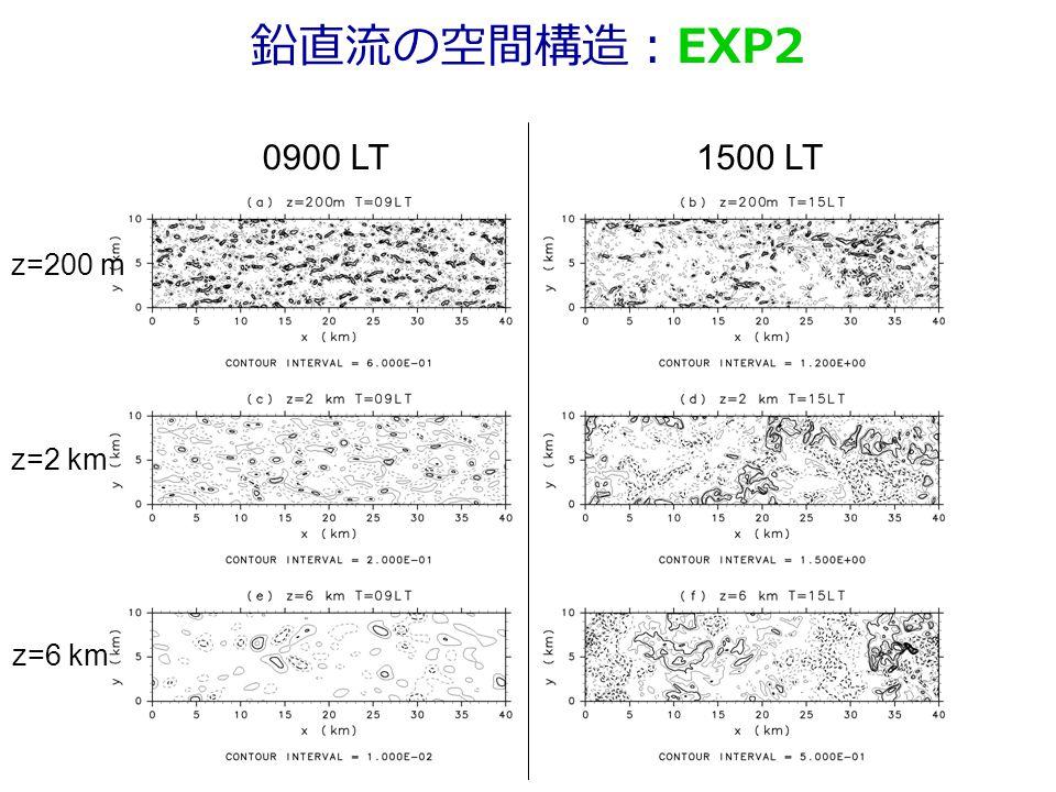 鉛直流の空間構造:EXP2 0900 LT1500 LT z=200 m z=2 km z=6 km