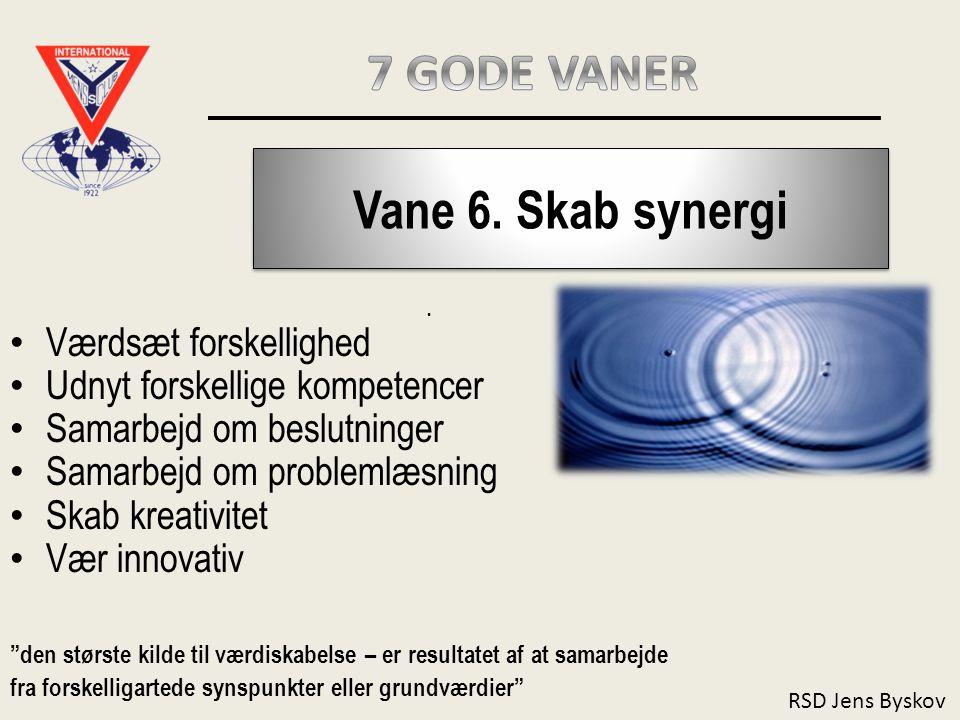 RSD Jens Byskov Vane 6.Skab synergi.