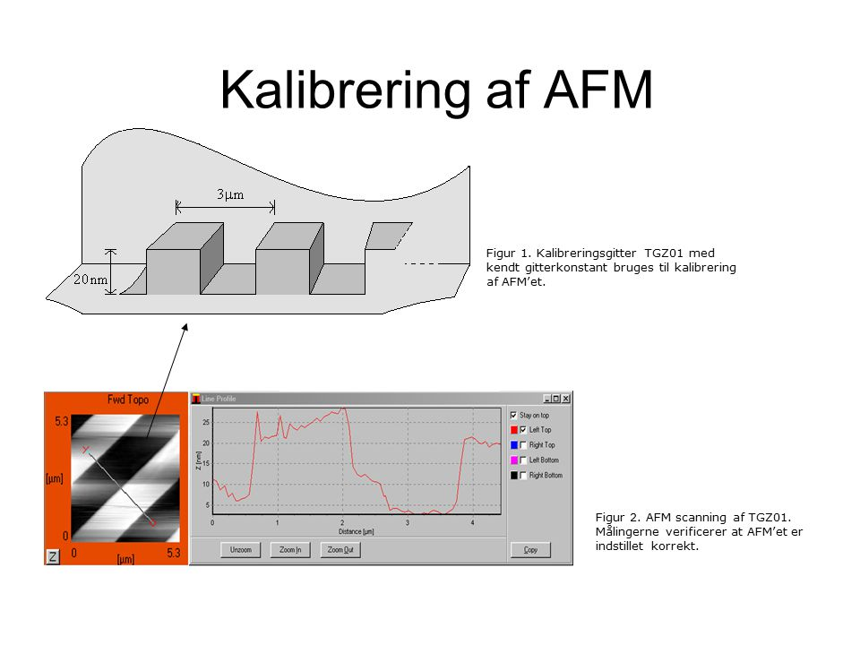 Kalibrering af AFM Figur 2. AFM scanning af TGZ01.